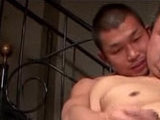 bear, fucked, japanese, mature